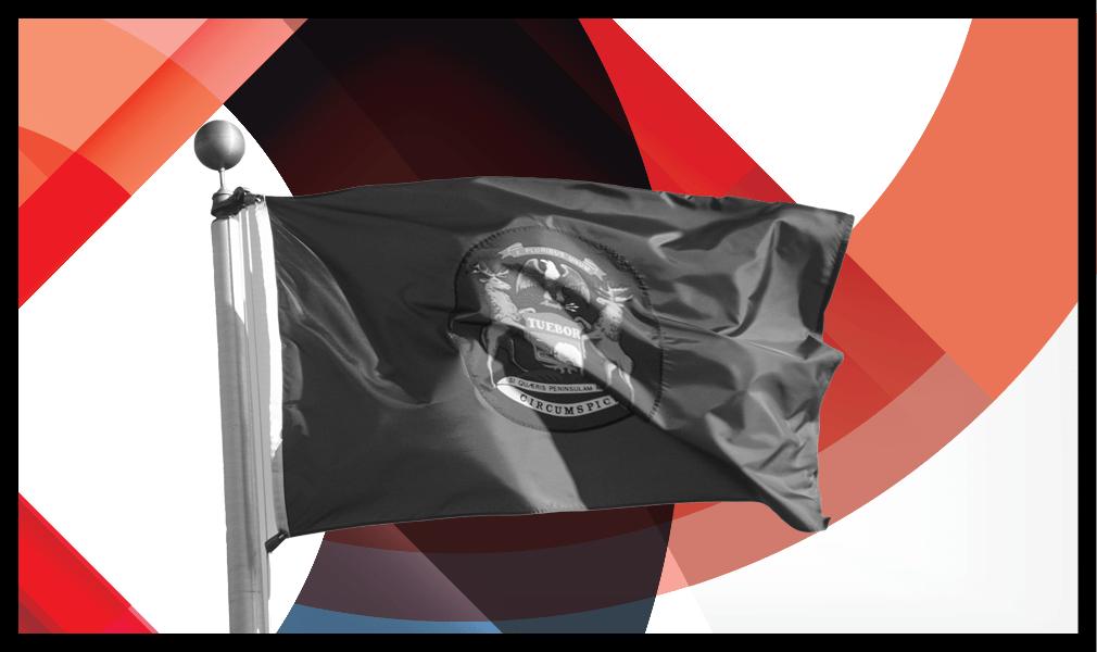 Michigan flag - HW+