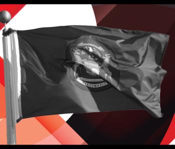 michigan flag HW+